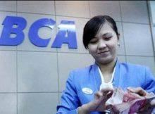 Cara Pinjam Uang Di Bank BCA, Ketahui dulu Jenis Pinjamannya!