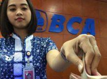 Pinjaman Bank BCA untuk Usaha Kecil Tanpa Jaminan