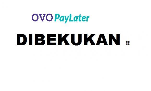 Solusi Ovo Paylater Dibekukan Atau Diblokir Panduan Bank